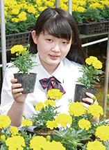 井口 七美さん
